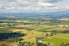 Farmland in Willamette Valley