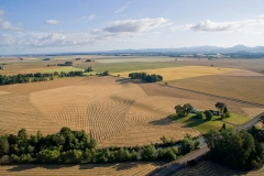 Willamette Valley Farms Fields Furrows