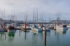 Yaquina Bay Crab Fleet Stock Image