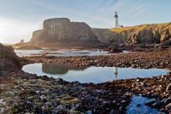 Yaquina Point Tide Pools